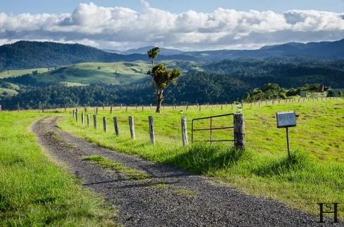 20120514-163049-Atherton Tableland, Australien, Weltreise-20120514-163049-Atherton-Tableland-Australien_DSC1627