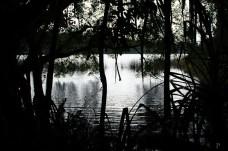 20120515-085948-Atherton Tableland, Australien, Lake Eacham, See, Weltreise-20120515-085948-Atherton-Tableland-Australien-Lake-Eacham-See_DSC1674