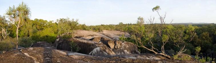 20120516-065606-Atherton Tableland, Australien, Granite Gorge, Wallabies, Weltreise-20120516-065606-Atherton-Tableland-Australien-Granite-Gorge-Wallabies_DSC2128-Edit