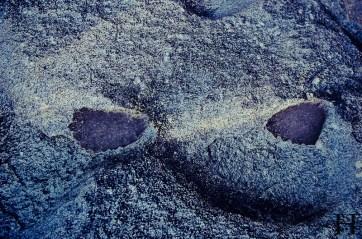 20120516-082018-Atherton Tableland, Australien, Granite Gorge, Wallabies, Weltreise-20120516-082018-Atherton-Tableland-Australien-Granite-Gorge-Wallabies_DSC2193