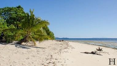 20120716-104758-Fidschi, Inselrundgang, Mana Island, Strand, Weltreise-_DSC9890