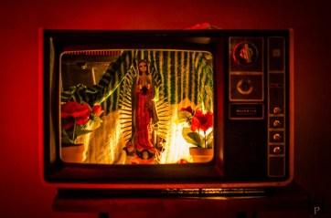 20120801-213238-Casa Angel, Mexiko, Oaxaca, Weltreise-_DSC0580