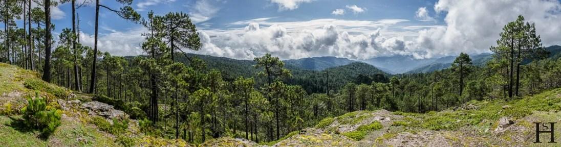 20120804-103215-Llano-Grande-Mexiko-Ruta-Piedra-Larga-Sierra-Norte-Weltreise-_DSC0742-_DSC0756_15_images_pano