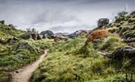 20121105-115918-Argentinien, El Chaltén, Mount Fitz Roy, Patagonien, Trekking, Weltreise-_DSC9611