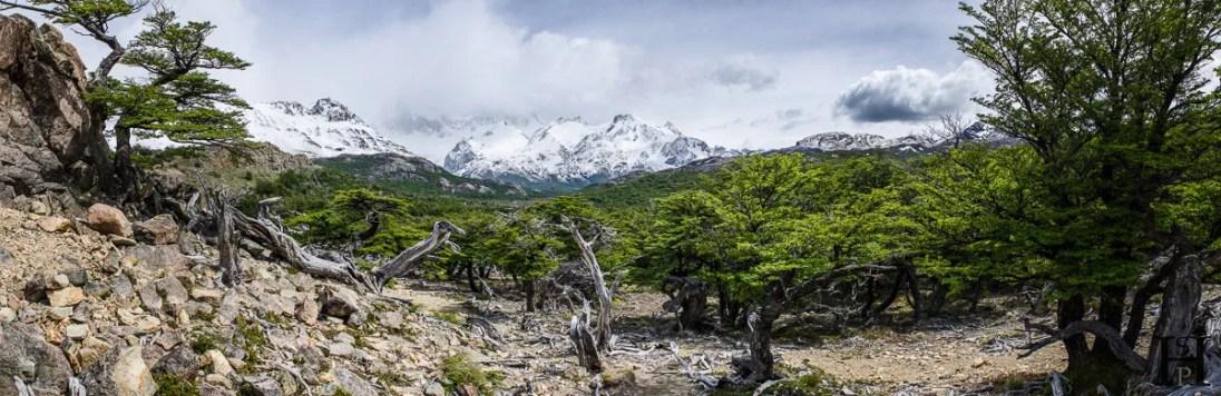 20121105-123830-Argentinien-El-Chaltén-Mount-Fitz-Roy-Patagonien-Trekking-Weltreise-_DSC9677-_DSC9688_12_images_pano