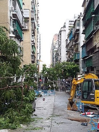 Typhoon can bring massive damage to the city