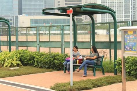 DW helpless in HK pregnancy