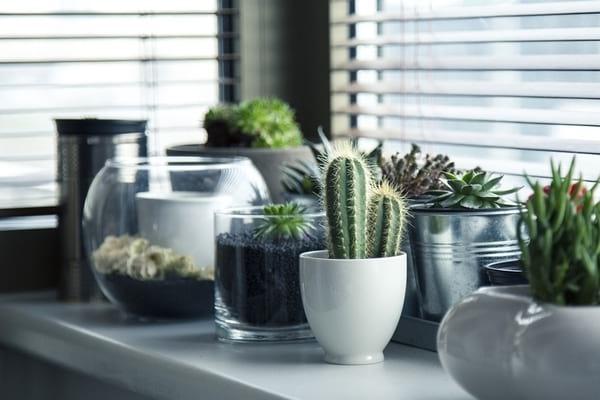 4 astuces pour bien decorer sa maison pendant l ete