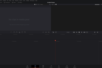 DaVinci Resolve window after enabling 2x scaling