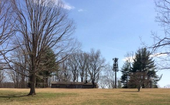 Bretton Woods Recreation Area monopine.