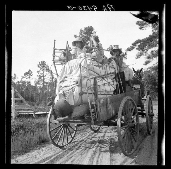 Moving day in the turpentine pine forest country. North Florida. U.S. Farm Security Administration/Office of War Information Black & White Photographs. Library of Congress.