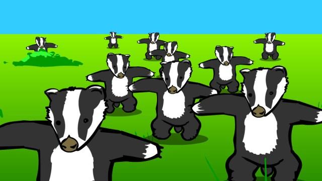 Badger, badger, badger, badger, badger, badger, badger...