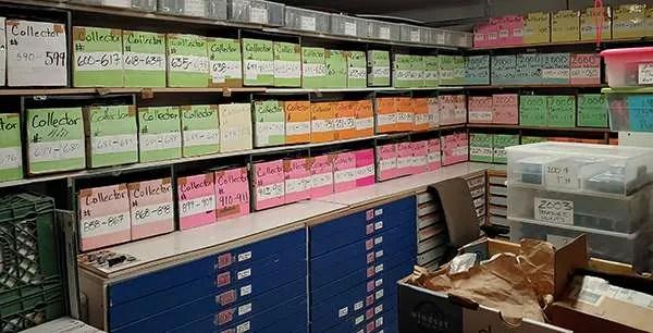 kmj diecast inventory