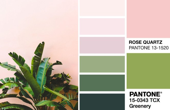 Tropical Green and Blush Pink Colour Palette