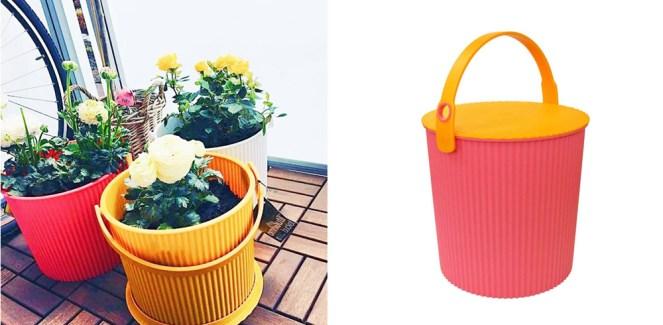 Houseplants Hachiman Bucket