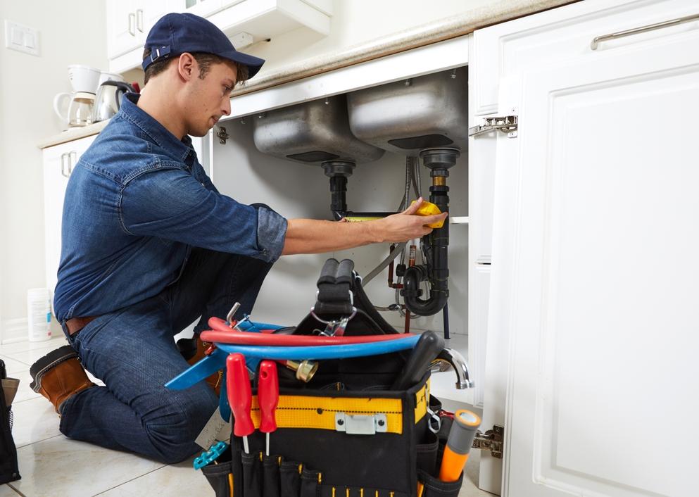 HomeBinder Home Professional