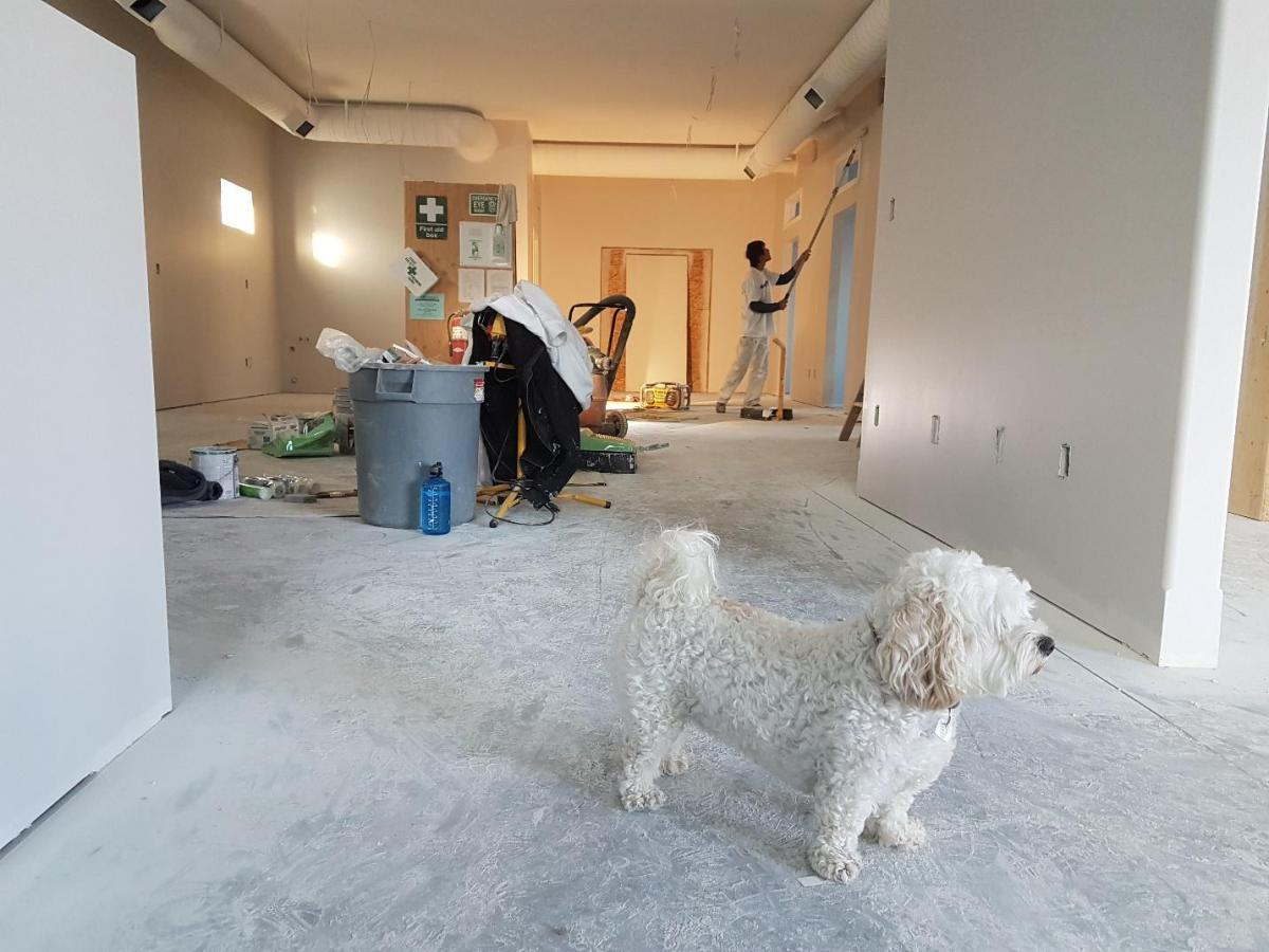 Key Considerations When Planning a Home Remodel