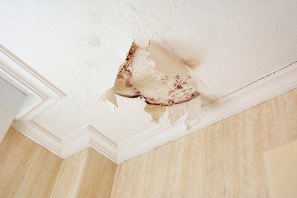 leak in ceiling, roof leak