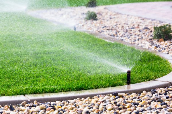 water lawn, sprinkler system in lawn
