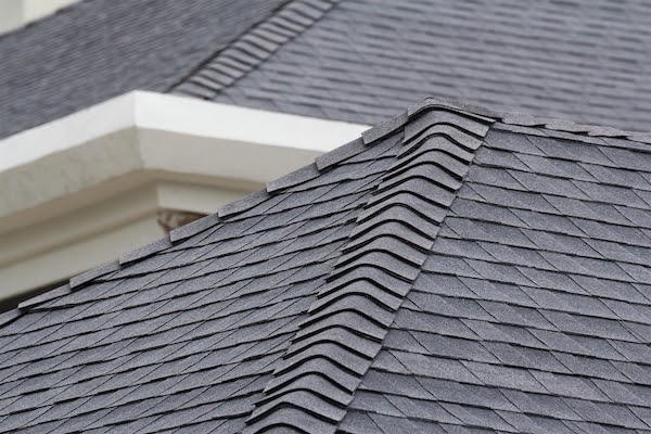 asphalt shingle roof