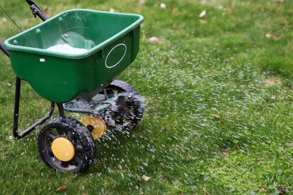 spreading seed and fertilizer for fall landscaping