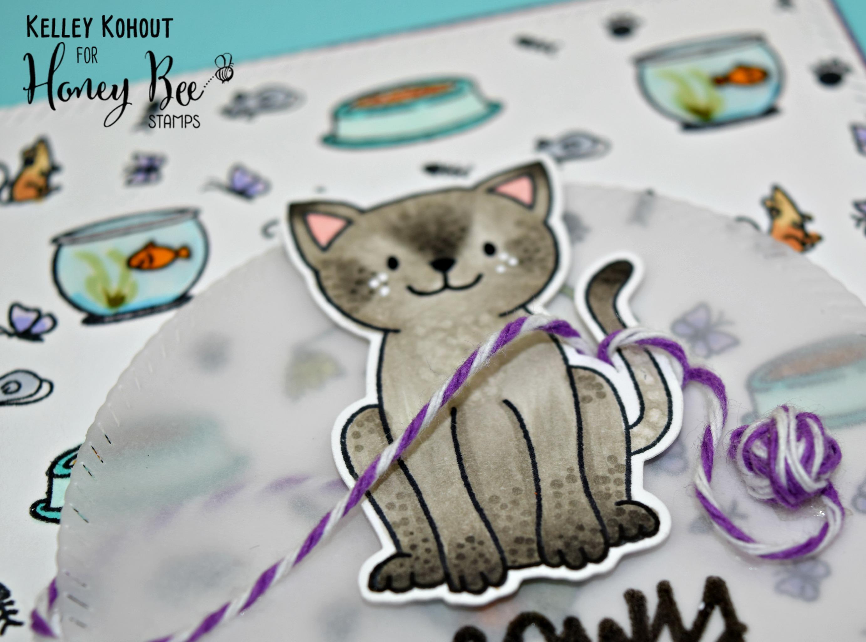Day 4 Sneak Peek at the Curious Kitties!