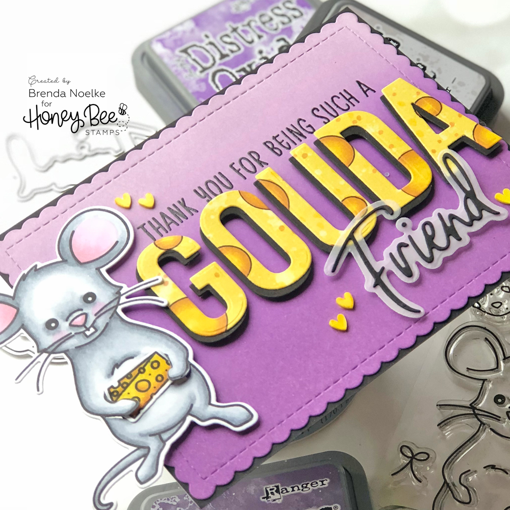 Gouda-Friend3