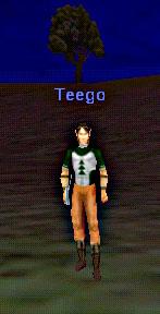 teego2_001