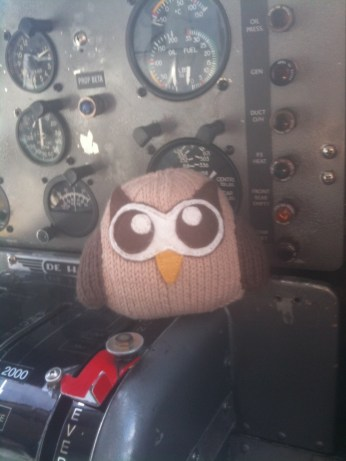 Owly Flying to Victoria