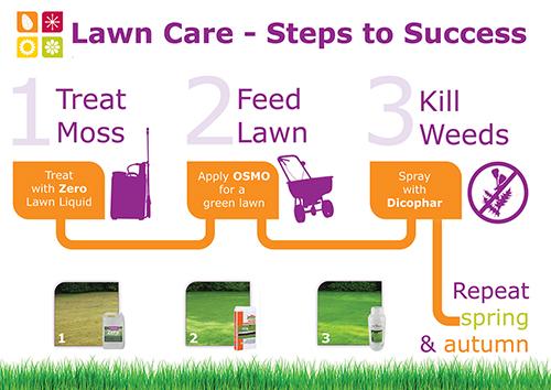 3 Step Lawn Care Program