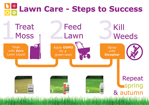 Lawn Care Steps to Success Programme