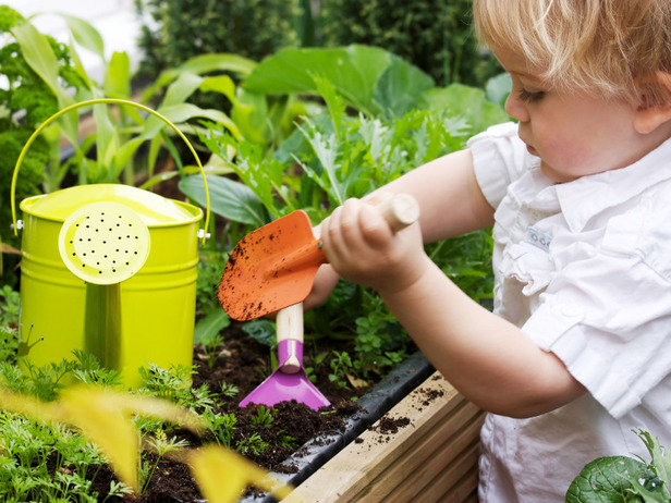 Child in the garden planting fruit.