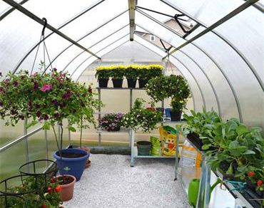Palram Bella Greenhouse - Inner