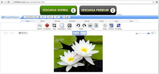 fotoflexer edición de imagen online