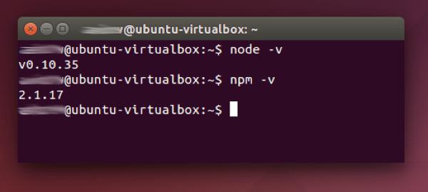 version nodejs y npm terminal