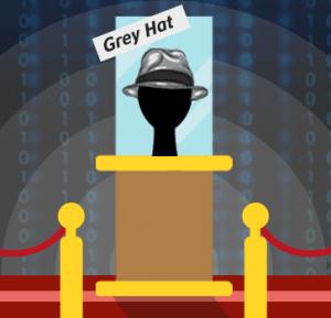 Sombrero Gris, Tipos de Hacker