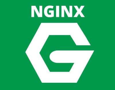 Logo NGINX-Blog HostDime