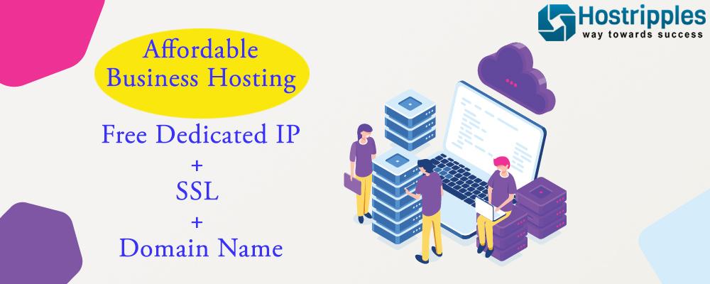 , Affordable Business Hosting | Free Dedicated IP + SSL + Domain Name @ Hostripples!, Hostripples Web Hosting