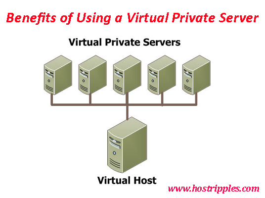 Virtual private server, Benefits of Using a Virtual Private Server, Hostripples Web Hosting