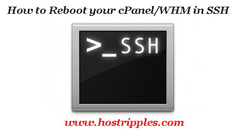 Reboot, How to Reboot your cpanel/whm in ssh, Hostripples Web Hosting