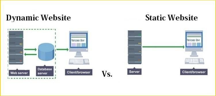 Host a Website, How to Host A Website | Web Hosting Guide for Beginners, Hostripples Web Hosting