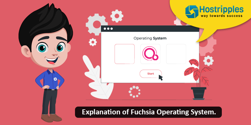 Explanation of Fuchsia Operating System., Hostripples Web Hosting