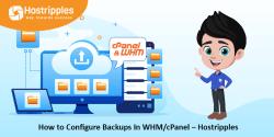 Set Up Service Monitoring in WHM cPanel- Hostripples, Hostripples Web Hosting