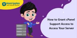 AutoSSL Server hostname, How To Install AutoSSL for Server Hostname – cPanel Server, Hostripples Web Hosting