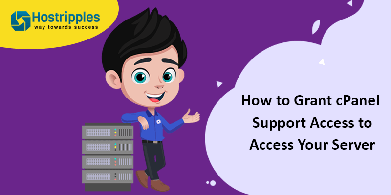 cpanel access support to your server
