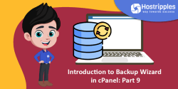 Introduction to Backup in cPanel: Part 8, Hostripples Web Hosting