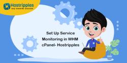 Steps For Configuring Primary MySQL Database on Your Server, Hostripples Web Hosting