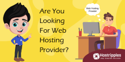 Domain Redirect, Domain Redirect to Subdirectory Without Changing URL: Domain Redirect, Hostripples Web Hosting