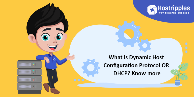 What is Dynamic Host Configuration Protocol OR DHCP? Know more, Hostripples Web Hosting