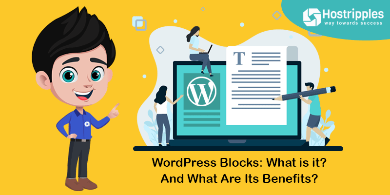WordPress Blocks: What is it? And What Are Its Benefits??, Hostripples Web Hosting